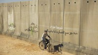 """Proyeccion: """"Un cerdo en Gaza"""" Sábado 26/09/2014 19:30 Hrs."""